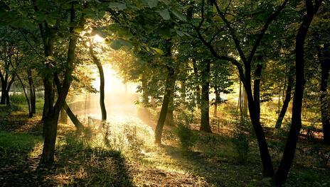 生活说说很现实的说说:你给我描述远方的诗,却抵不过生活的现实